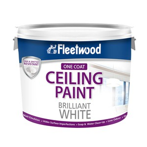 Fleetwood Ceiling Paint